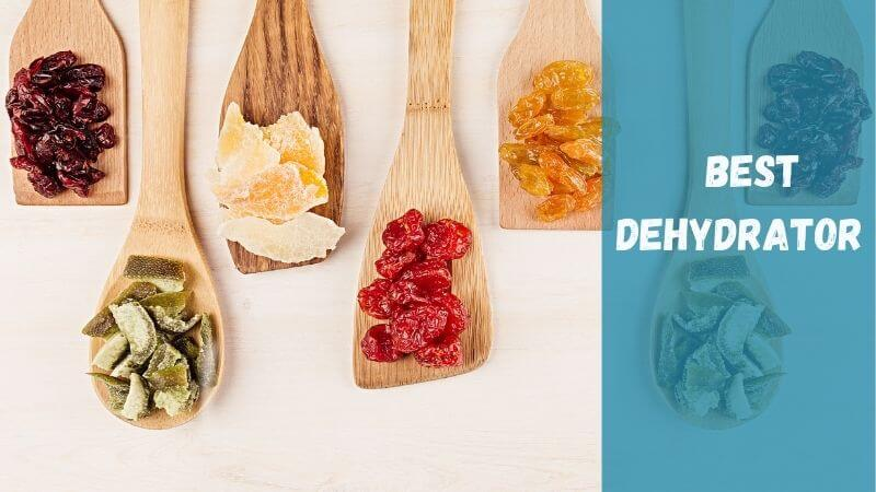 best-dehydrator-for-fruits-and-vegetables